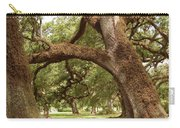 A Maze Of Oak Trees  Carry-all Pouch