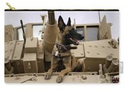 A Military Working Dog Sits On A U.s Carry-all Pouch