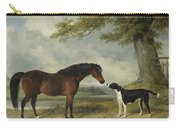 A Pony With A Dog Carry-all Pouch