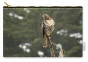 A Red-tailed Hawk Juvenile Carry-all Pouch
