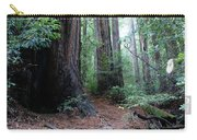 A Redwood Trail Carry-all Pouch