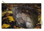 A Rock Amongst Decay Carry-all Pouch