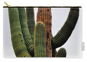 A Saguaro Afternoon Carry-all Pouch