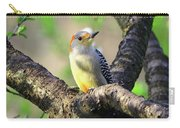 A Shady Woodland Bird Red-bellied Woodpecker Carry-all Pouch