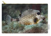A Spotted Trunkfish, Key Largo, Florida Carry-all Pouch