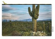 A Spring Evening In The Sonoran  Carry-all Pouch