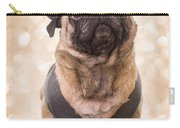 A Star Is Born - Dog Groom Carry-all Pouch by Edward Fielding