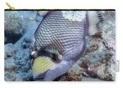 A Titan Triggerfish Faces Carry-all Pouch
