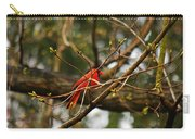 A Touch Of Red Carry-all Pouch
