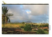 A View Of Prince Kuhio Park Carry-all Pouch