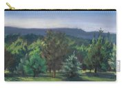 A View Of The Catskill Mountains Carry-all Pouch