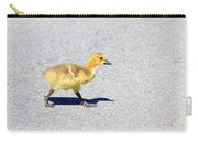 A Walk On Asphalt  Carry-all Pouch