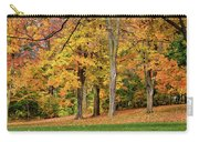 A Wonderful Walk In The Park Carry-all Pouch