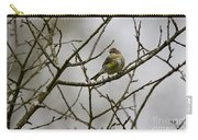 A Yellow-rumped Warbler In The Evening Carry-all Pouch