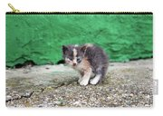 Abandoned Kitten On The Street Carry-all Pouch