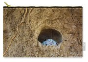 Abandoned Royal Cell Carry-all Pouch