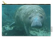 About To Meet A Manatee Carry-all Pouch