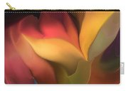Abstract 051816 Carry-all Pouch