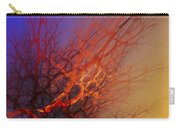 Abstract 112810a Carry-all Pouch