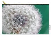 Abstract Dandy Lion - Teal Carry-all Pouch