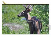 Acadia Buck 2 Carry-all Pouch