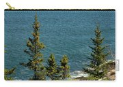 Acadia's Atlantic Carry-all Pouch