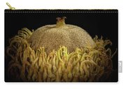 Acorn Emerging Carry-all Pouch