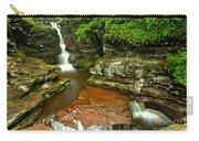 Adams Falls Landscape Carry-all Pouch