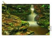 Adams Falls Portrait Carry-all Pouch