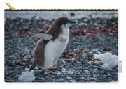 Adelie Penguin Chick Running Along Stony Beach Carry-all Pouch