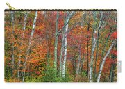 Adirondack Birches In Autumn Carry-all Pouch
