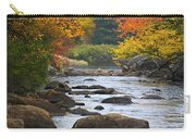Adirondack Fall Stream 2 Carry-all Pouch