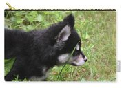 Adorable Alusky Pup Creeping Through Tall Blades Of Grass Carry-all Pouch