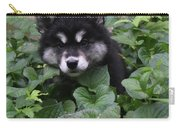 Adorable Alusky Puppy Hiding In A Garden Carry-all Pouch