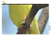 Adorable Close Up Of A Yellow Parakeet Carry-all Pouch
