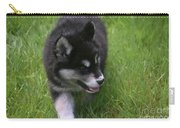 Adorable Fluffy Alusky Puppy Walking In Tall Grass Carry-all Pouch