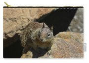 Adorable Up Close Look Into The Face Of A Squirrel Carry-all Pouch