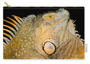 Adult Male Green Iguana Carry-all Pouch