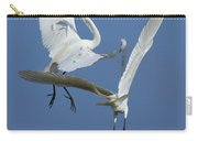 Aerial Ballet Carry-all Pouch