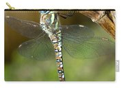Aeshna Mixta Dragonfly Carry-all Pouch
