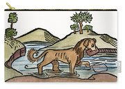 Aesop: Dog & Shadow, 1484 Carry-all Pouch