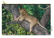 African Lion Panthera Leo On Tree, Lake Carry-all Pouch