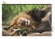 African Lion Sleeping In Serengeti Carry-all Pouch