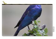 African White Eye Starling Carry-all Pouch