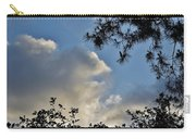 After The Rain I Carry-all Pouch