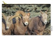 After The Rut Bighorn Sheep Carry-all Pouch