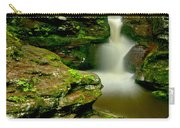 Afternoon At Adams Falls Carry-all Pouch