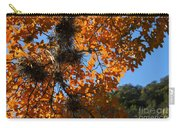 Afternoon Light On Maple Leaves Carry-all Pouch