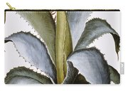 Agave, 1613 Carry-all Pouch