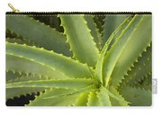 Agave  Big Sur California Carry-all Pouch by Sebastian Kennerknecht